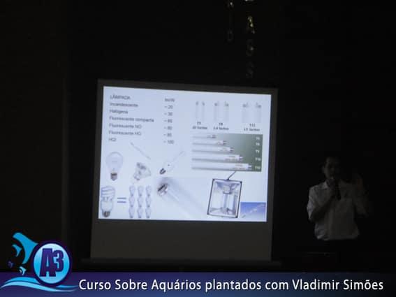 Curso de aquário plantado com Vladimir Simões em Alagoas