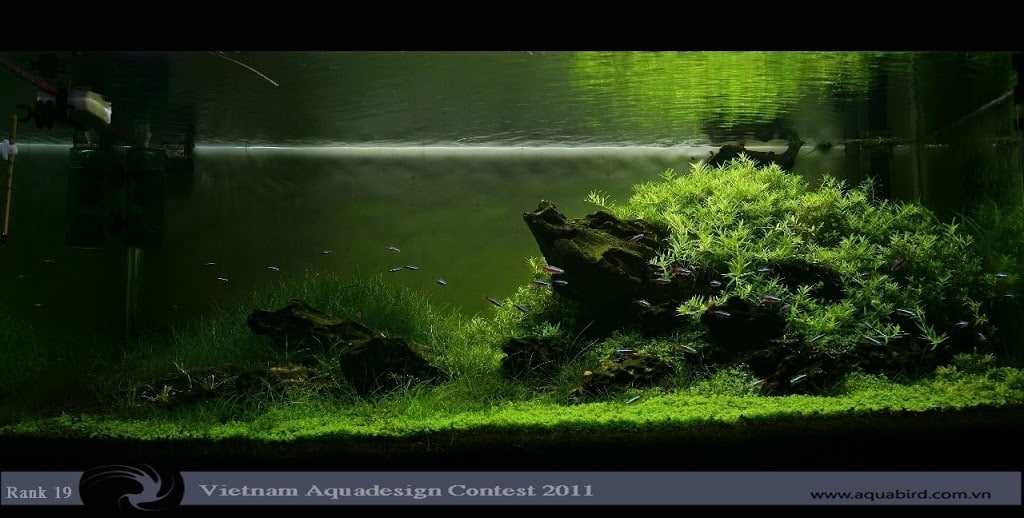 Aquatic-Design-Contest-2011-19