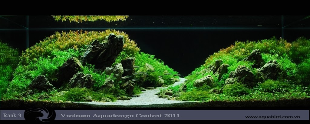 Aquatic-Design-Contest-2011-3-25C2-25BA