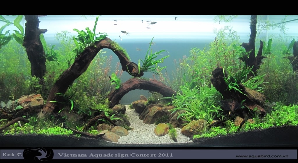 Aquatic-Design-Contest-2011-32-25C2-25BA