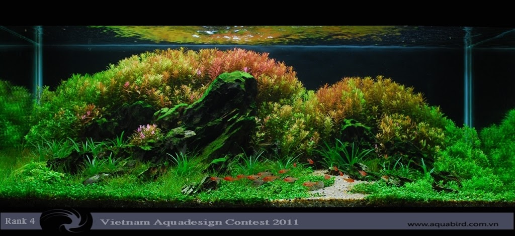 Aquatic-Design-Contest-2011-4-25C2-25BA