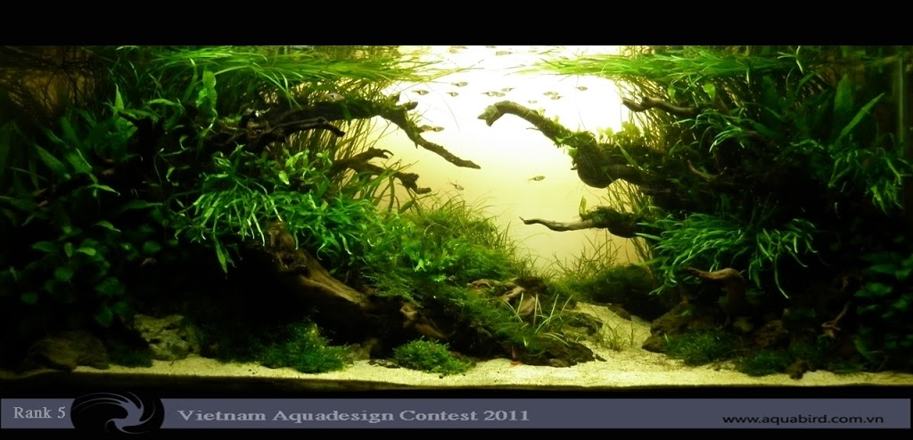 Aquatic-Design-Contest-2011-5-25C2-25BA