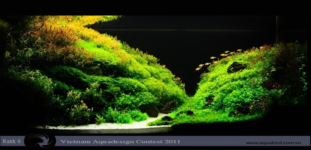 Aquatic-Design-Contest-2011-6-25C2-25BA