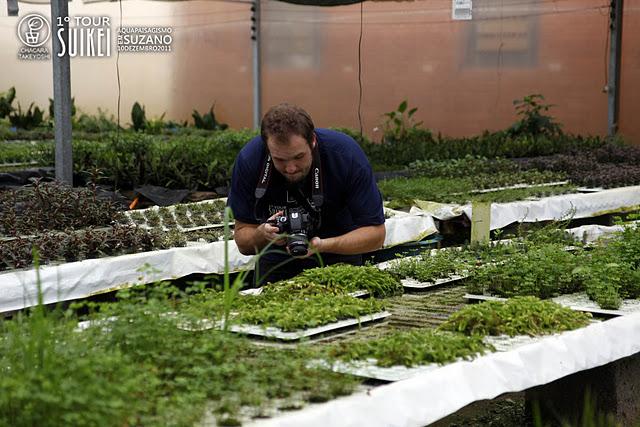 Muitas plantas e muitos detalhes para serem fotografados.