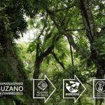 slide1 • 1º Suikei Tour em Suzano- SP