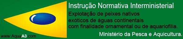 AquaA3.com-Minist-25C3-25A9rio-da-Pesca-e-Aquicultura