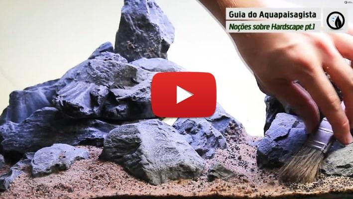 #2 Guia do Aquapaisagista: Noções sobre Hardscape