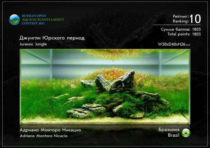 Russian Open Aquatic Plants Layout Contest 2012