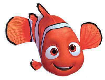 Peixe nemo