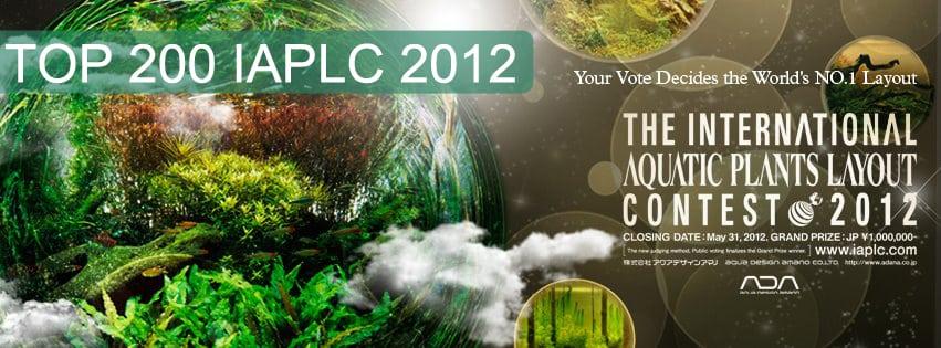 Top 200 IAPLC 2012 The International Aquatic Plants Layout Contest