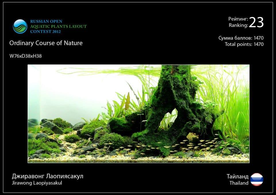Rank 23 Russian Open Aquatic Plants Layout Contest