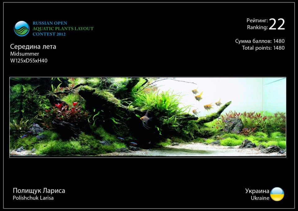 Rank 22 Russian Open Aquatic Plants Layout Contest