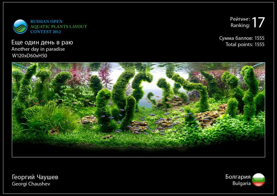 Rank 17 Russian Open Aquatic Plants Layout Contest