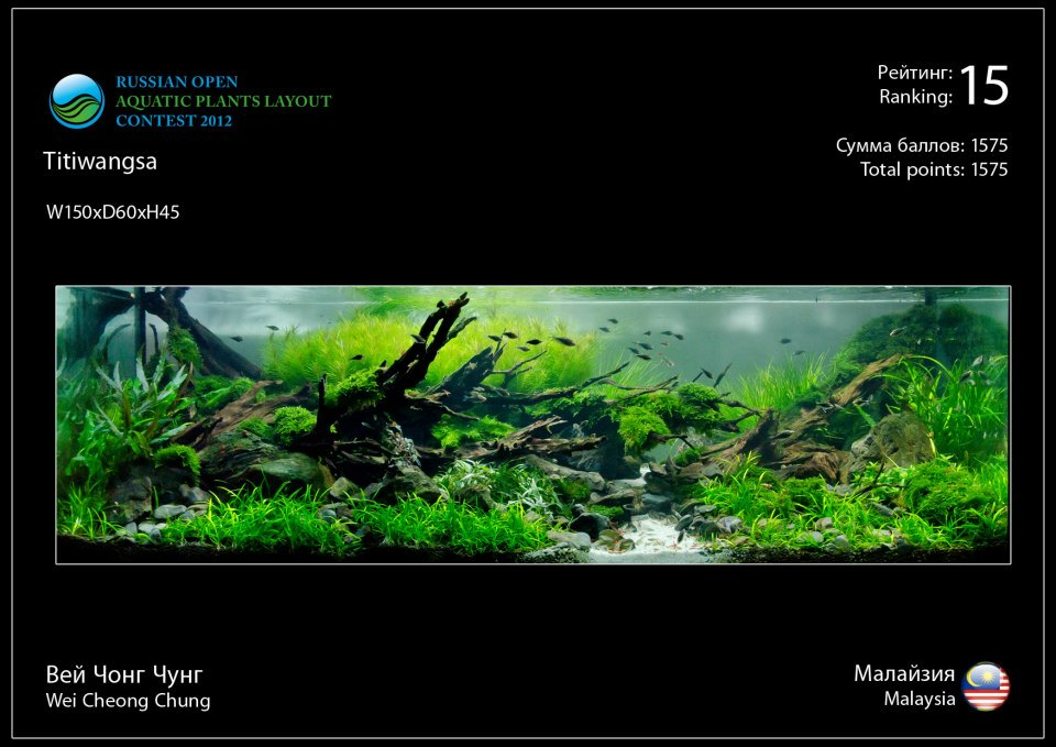 15 Russian Open Aquatic Plants Layout Contest