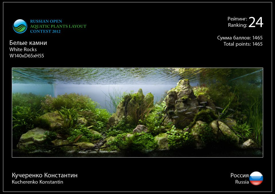 Rank 24 Russian Open Aquatic Plants Layout Contest