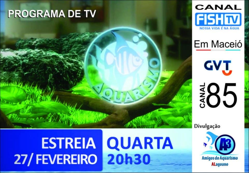 Fish Tv Aquarismo