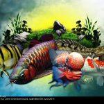 935377 1297583387048402 1027900762 n • Compilação: Arte no Aquarismo
