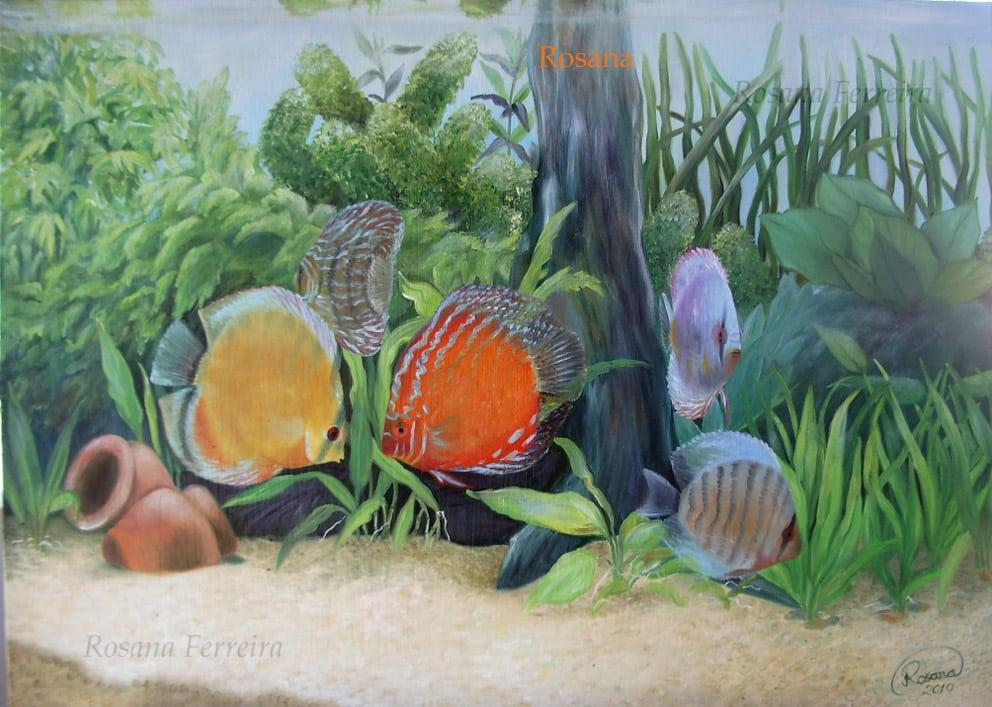 Arte no aquarismo - Discos