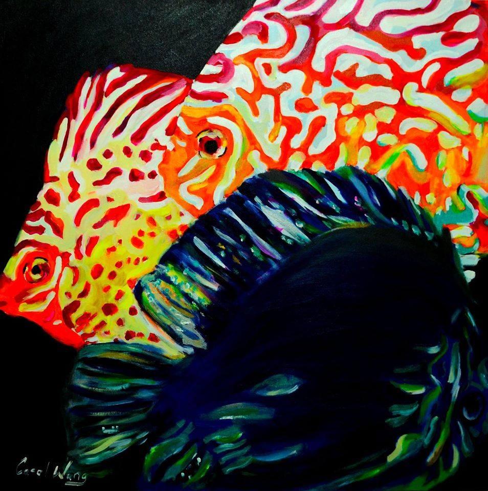 Arte peixe disco Carol Wang