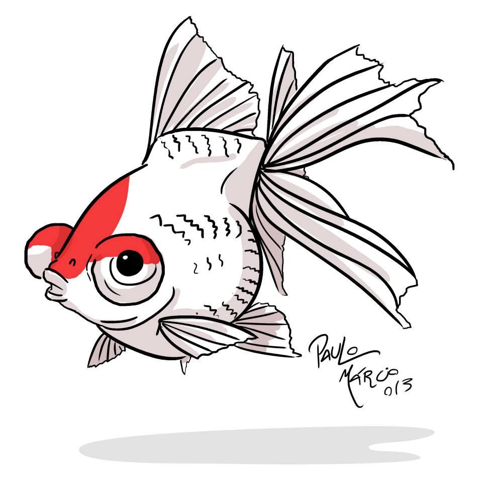 Kinguio (Famoso peixinho dourado) variante telescópio red white em estilo cartoon