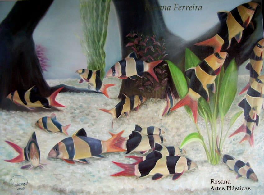 arte no aquarismo -  Botias