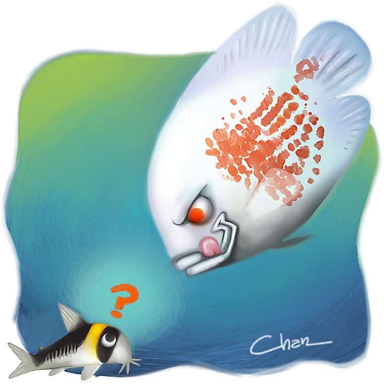 ilustra-cory-chantal-sekai-800