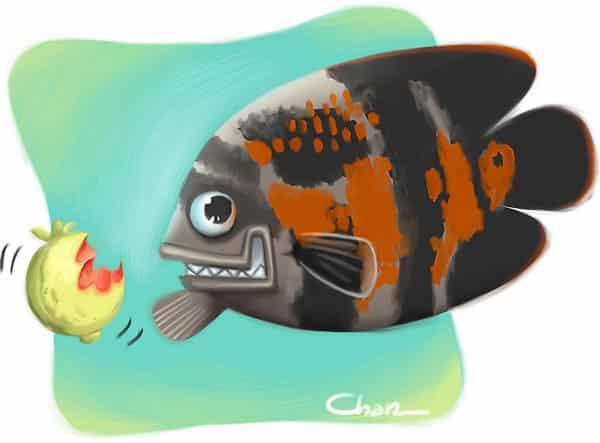 ilustra-fruta-chantal-sekai