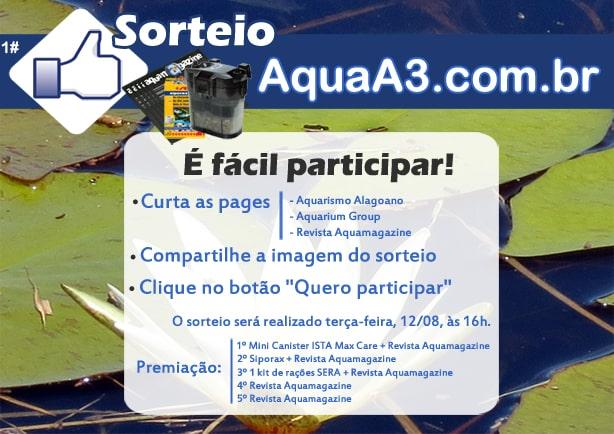 Sorteio Aquarismo Alagoano.