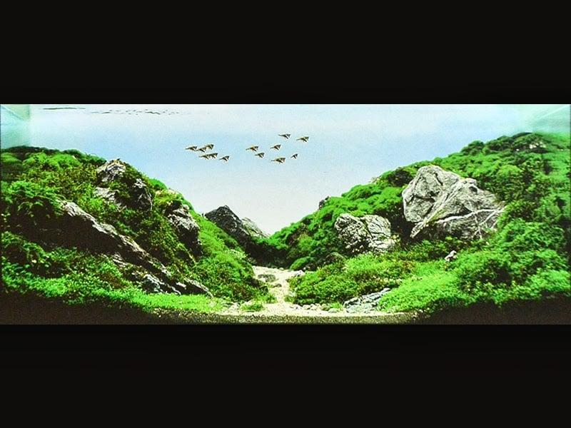 25 黃 仲鳴 MACAU