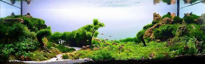 1026-Selcuk-Durmaz-TURKEY