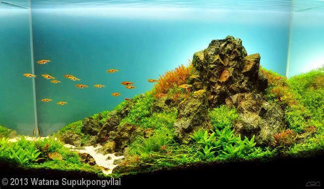 114-Watana-Supukpongvilai-THAILAND