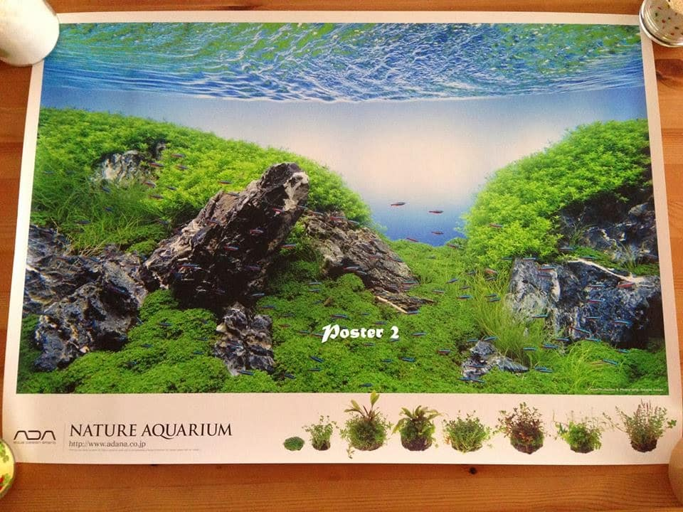 Sorteio: Nature Aquarium Calendar 2014