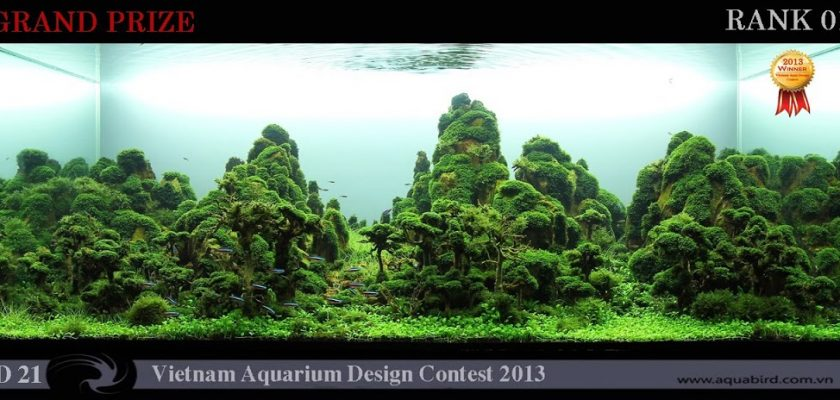 Quan Nguyen Minh Resultado do Vietnam Aquatic Design Contest 2013