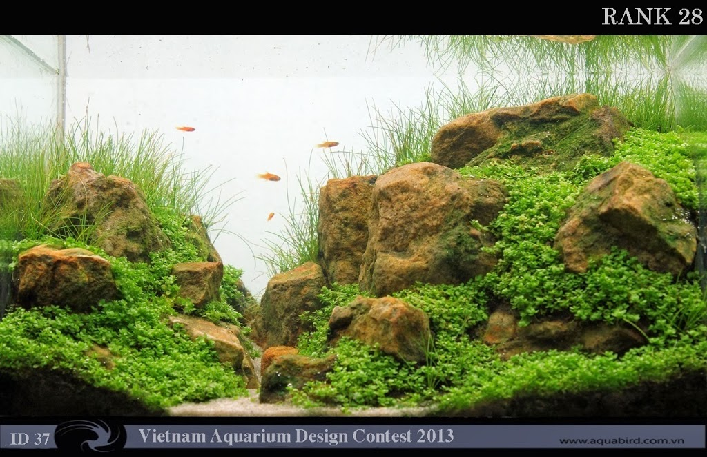 28 Resultado do Vietnam Aquatic Design Contest 2013