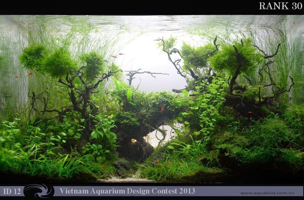 30 Resultado do Vietnam Aquatic Design Contest 2013