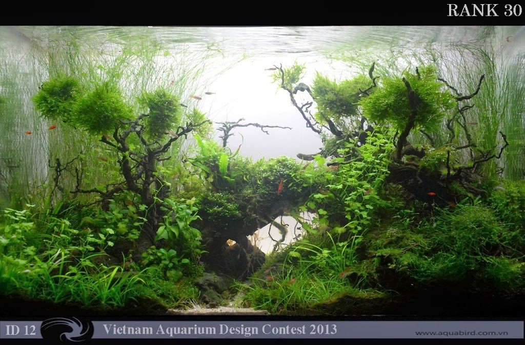 30 Resultado do Vietnam Aquatic Design Contest 2013
