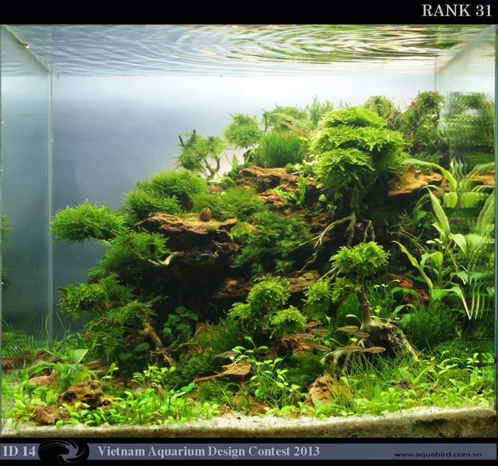 31 Resultado do Vietnam Aquatic Design Contest 2013