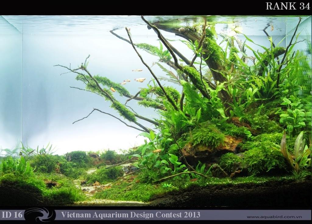 34 Resultado do Vietnam Aquatic Design Contest 2013