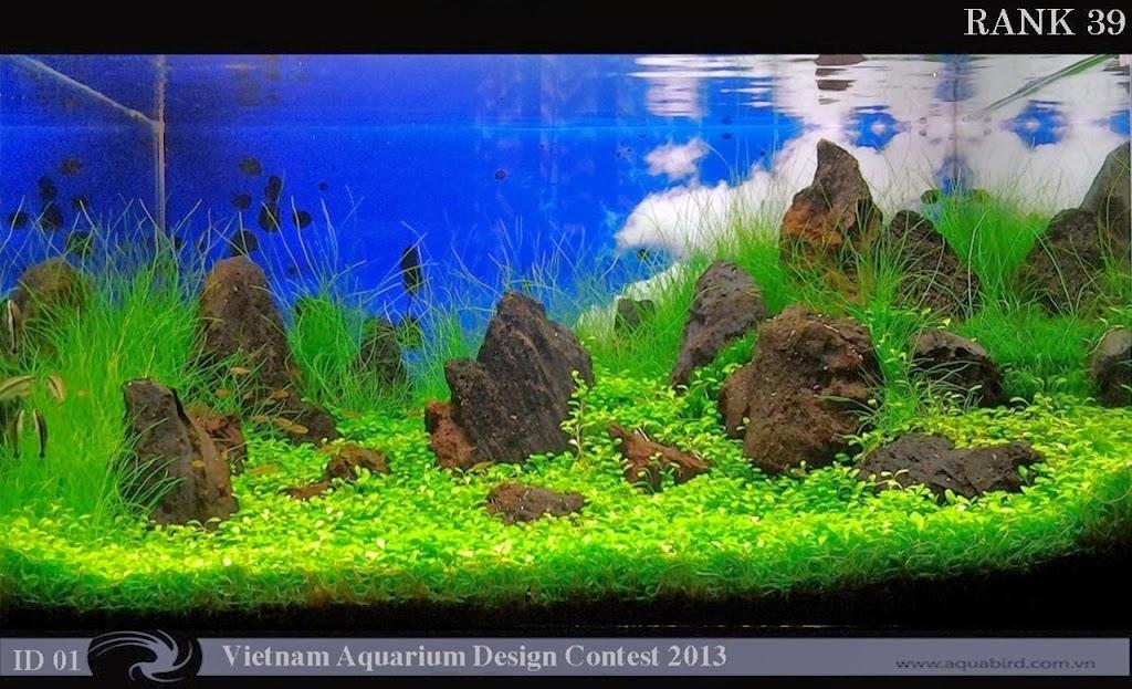 39 Resultado do Vietnam Aquatic Design Contest 2013