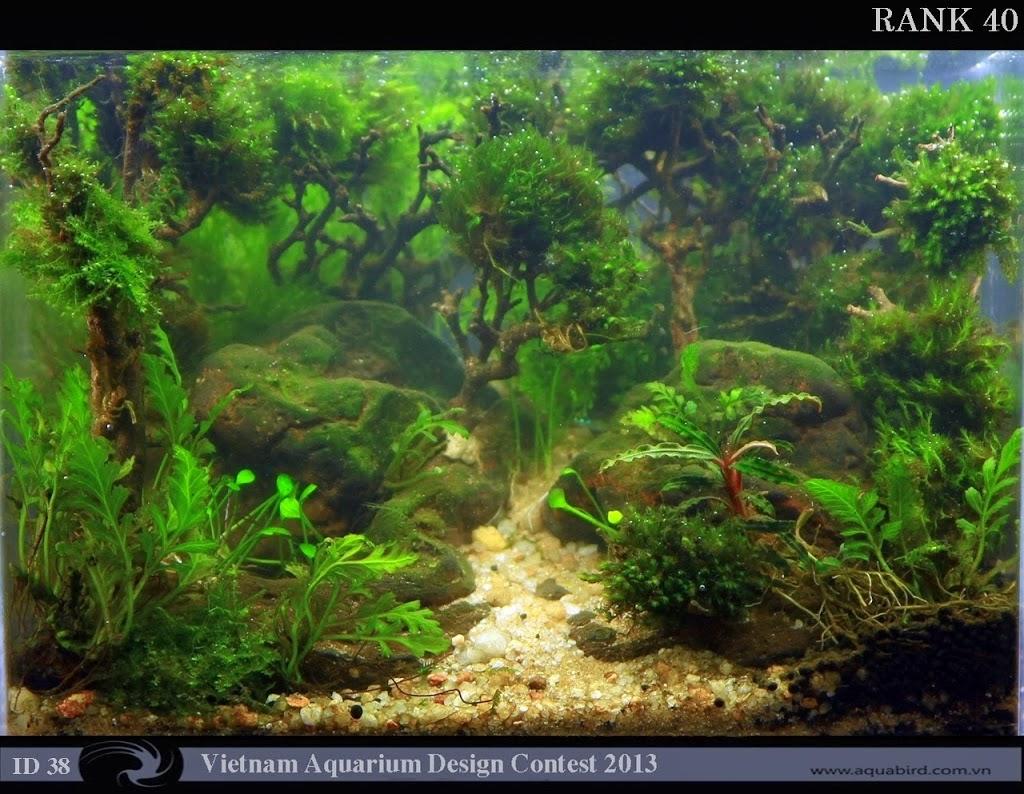 40 Resultado do Vietnam Aquatic Design Contest 2013