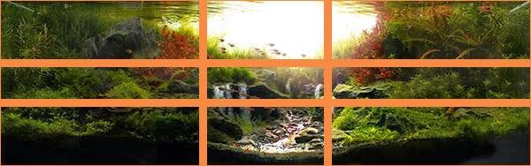 """Analise da montagem """"Sunrise in the Valley"""" de Marcelon Tonon 3º IAPLC 2013"""