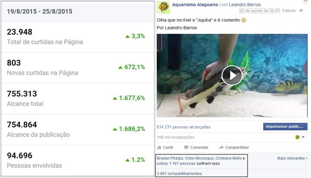Fan page no Facebook Aquarismo Alagoano