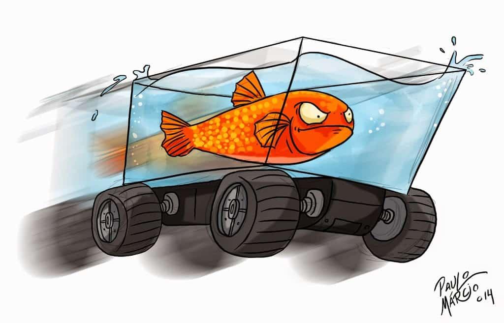 fish car 2 • Peixe Japonês aprende a 'dirigir' em aquário motorizado