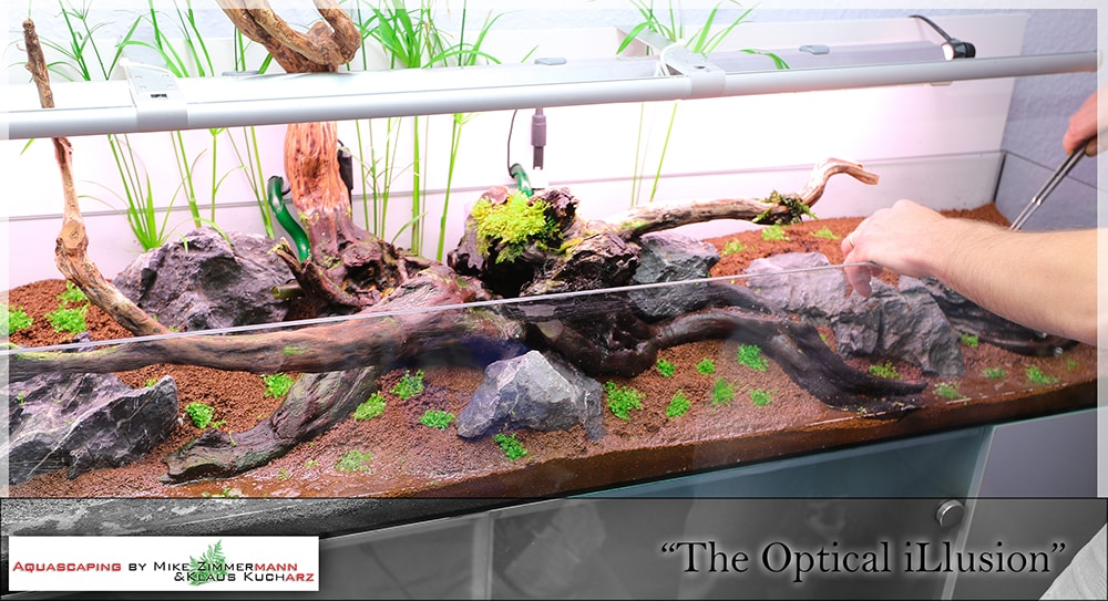 Aquascaping evolution The Optical ilusion by Mike Zimmermann