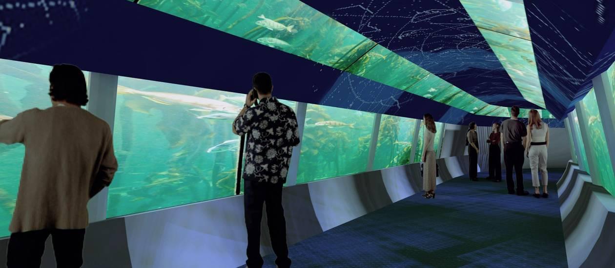 Aquario Rio de Janeiro aquario aquario