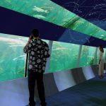 Aquario Rio de Janeiro aquario • Vagas de emprego: AquaRio já começou a contratar