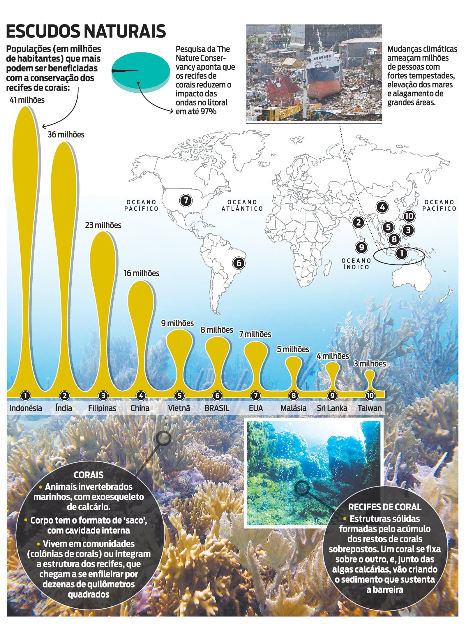 Corais ajudam a protejer cidades costeiras