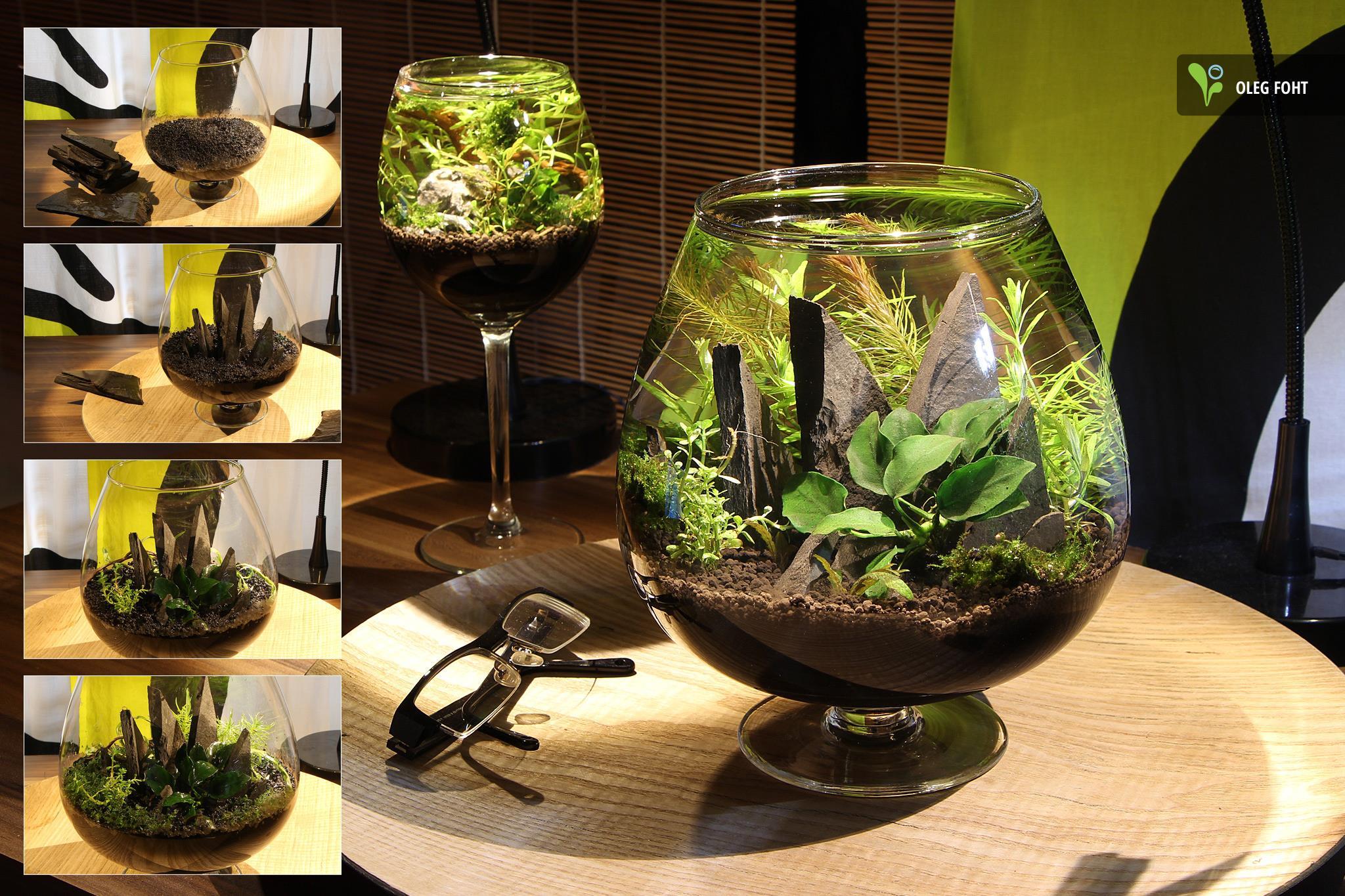 Oleg Foht - Miniature aqua