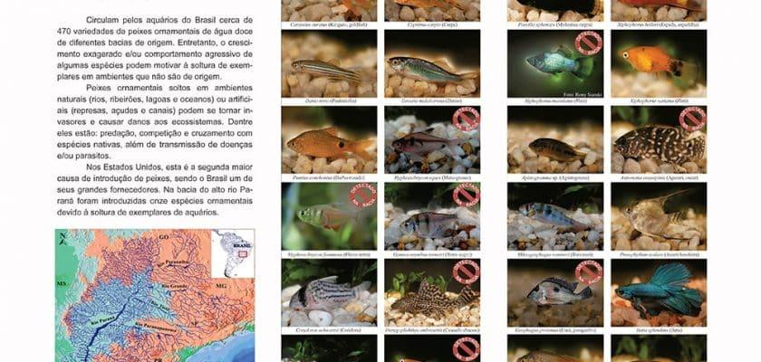 Download: Folder informativo sobre peixes introduzidos em habitat natural