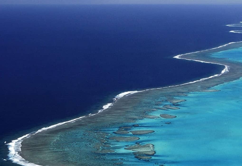 ONU oferece bolsas para pesquisadores em assuntos marinhos